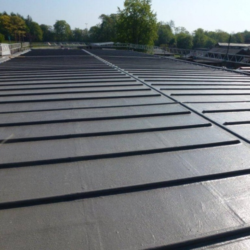 Polyroof Technology Development Roofing